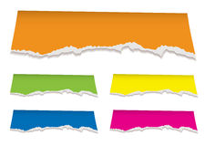 Florescent torn paper header Royalty Free Stock Image