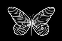 Florescent White Butterfly. Isolated on a black background Stock Illustration