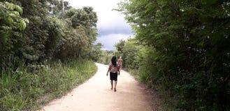 Florest auf Aldeias-Stadt, Innenraum von pernambuco, Brasilien stockbilder