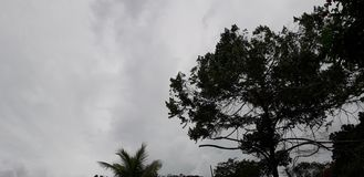 Florest na Aldeias mieście, wnętrze pernambuco, Brazylia zdjęcia royalty free