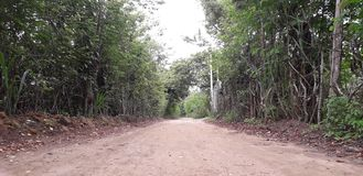 Florest na Aldeias mieście, wnętrze pernambuco, Brazylia obrazy royalty free