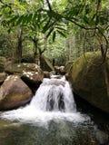 Floresta úmida da cachoeira foto de stock royalty free