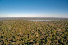 Floresta úmida e rio atlânticos de Iguazu fotografia de stock royalty free