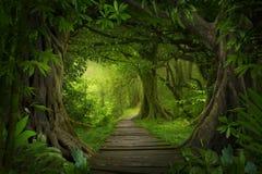 Floresta úmida profunda de 3Sudeste Asiático com vegetação densa fotos de stock