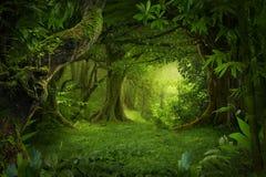 Floresta úmida profunda de 3Sudeste Asiático com vegetação densa fotos de stock royalty free