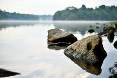 Floresta úmida rochosa da água calma imagens de stock