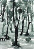 Floresta ilustração stock