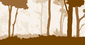 Floresta 3 Imagens de Stock Royalty Free