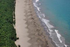 Floresta, areia e água azul do oceano Vista da praia selvagem fotos de stock royalty free