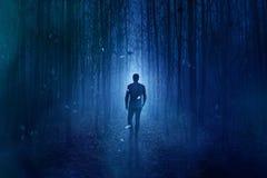 Floresta assustador Imagem de Stock Royalty Free