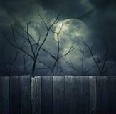 Floresta assustador com Lua cheia, árvores inoperantes, fundo de Dia das Bruxas Foto de Stock