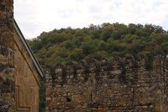 Floresta atrás da parede da fortaleza imagem de stock royalty free