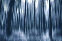 Floresta azul Fotos de Stock Royalty Free