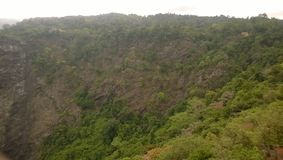 A floresta bonita Imagem de Stock Royalty Free