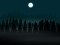 Floresta boreal na noite nevoenta da Lua cheia Fotos de Stock Royalty Free