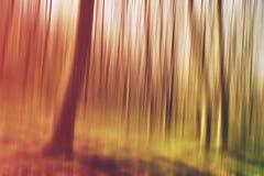Floresta borrada como o fundo abstrato da natureza Fotos de Stock Royalty Free