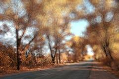 Floresta borrada do outono do fundo Fotos de Stock Royalty Free