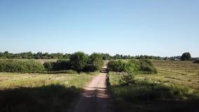 Floresta, campo, rio e estrada video estoque