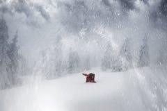 Floresta coberto de neve em uma tempestade Fotos de Stock