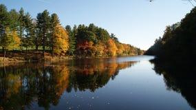 Floresta colorida de Nova Inglaterra no outono com as folhas vermelhas, verdes, amarelas e alaranjadas que refletem em um rio do  Foto de Stock