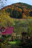 Floresta colorida do outono Foto de Stock Royalty Free