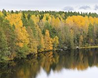 Floresta colorida do outono na costa do lago Fotografia de Stock Royalty Free