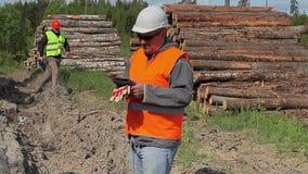 A floresta comanda próximo para serrar madeira a pilha vídeos de arquivo
