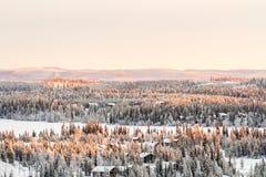 Floresta conífera coberta com a neve Opinião bonita do inverno em Finlandia, Ruka fotos de stock
