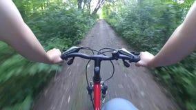 Floresta da câmera da ação da bicicleta vídeos de arquivo