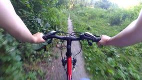 Floresta da câmera da ação da bicicleta video estoque