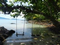 Floresta da cena do mar da ilha de Tailândia Fotografia de Stock Royalty Free