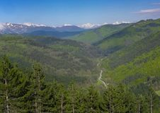 A floresta da estrada e da montanha do verde floresta ajardina em Pyrenees, Navarra Foto de Stock Royalty Free