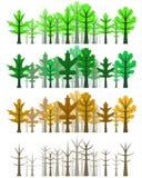 Floresta da folha do carvalho - quatro estações Foto de Stock Royalty Free