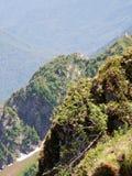 Floresta da montanha Imagem de Stock