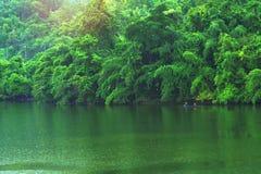 A floresta da montanha com o rio da chuva e do kwai ajardina no kanchanab Foto de Stock Royalty Free
