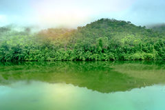 A floresta da montanha com o rio da névoa e do kwai ajardina no kanchanabu Fotos de Stock