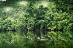 A floresta da montanha com o rio da névoa e do kwai ajardina no kanchanabu Fotografia de Stock