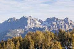 Floresta da montanha com um helicóptero foto de stock