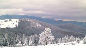 A floresta da montanha do inverno vídeos de arquivo