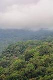 Floresta da montanha, ilha de Bali, Indonésia imagem de stock
