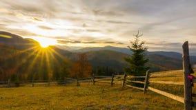 A floresta da montanha no fundo do por do sol filme