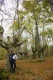 Floresta da queda da menina Foto de Stock