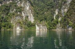 Floresta da reflexão da água Imagens de Stock Royalty Free