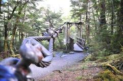 Floresta da trilha de Routeburn Imagem de Stock Royalty Free