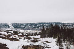 Floresta da vista e montanhas e neve surpreendentes Imagem de Stock Royalty Free