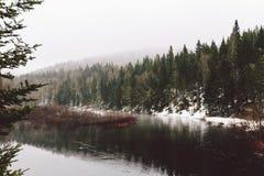 Floresta da vista e montanhas e neve surpreendentes imagens de stock royalty free