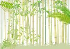 Floresta de bambu ilustração royalty free