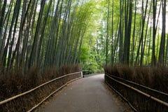Floresta de bambu em Kyoto, Japão Foto de Stock Royalty Free