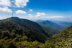 Floresta de Cameron Highlands Mossy que trekking foto de stock