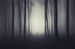 Floresta de Dia das Bruxas com homem Fotos de Stock Royalty Free
